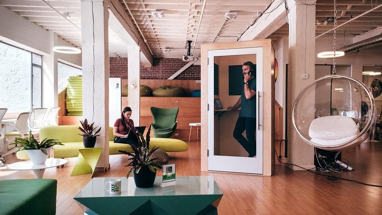 lush office environment
